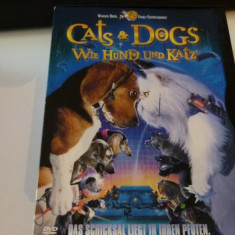Cat's &  dog's -dvd, Engleza