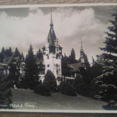 Sinaia, Palatul Peles, Atelier Gust. Brasov// fotografie tip CP