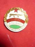 Insigna Militara-Educatia pt. Aparare org. MHSZ Ungaria ,metal si email ,h=2,5cm
