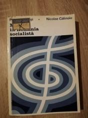 Petre Brancusi, Nicolae Calinoiu - Muzica in Romania socialista [1973] foto