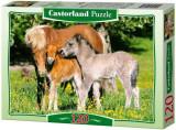 Puzzle Ponei, 120 piese, castorland