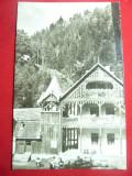 Ilustrata Valea Vinului Nasaud 1972, Circulata, Fotografie