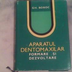 Aparatul dentomaxilar-formare si dezvoltare-Dr.Gh.Boboc, Alta editura