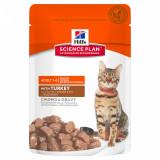 Hill's SP Feline Adult Bucatele de Carne in Sos cu Curcan, Plic, 85 g