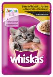 Whiskas Junior Pasare 100 g