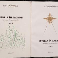 ISTORIA IN LACRIMI 2VOL LUCA CALVARASAN EPISODUL TARGSOR SI ALTELE 1998 LEGIONAR