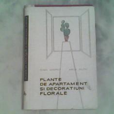 Plante de apartament si decoratiuni florale-Eugen Sadovsky,Amelia Militiu, Alta editura