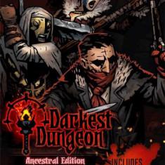 Darkest Dungeon Ancestral Edition Nintendo Switch