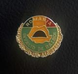 Insigna Invalid de razboi - tema militara - ww2