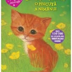 Roscovana, o pisicuta a nimanui - Holly Webb
