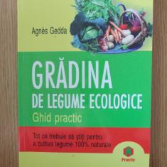 GRADINA DE LEGUME ECOLOGICE- GEDDA