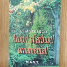 ARBORI SI ARBUSTI ORNAMENTALI- MATEESCU