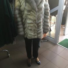 Haina de blana vulpe polara