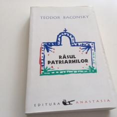 TEODOR BACONSKY, RASUL PATRIARHILOR. ESEU DESPRE RAS IN PATRISTICA GREACA