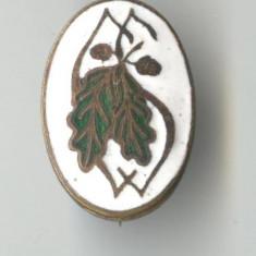 SILVICULTURA - FORESTIERA - Insigna VECHE PERIOADA REGALA 1930 - RARA