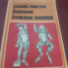 M STOICA - LUCRARI PRACTICE DE ANATOMIE SI FIZIOLOGIE ANIMALA