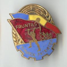 FRUNTAS IN MUNCA PATRIOTICA 1950  - Insigna SUPERBA EMAIL