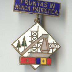 FRUNTAS IN MUNCA PATRIOTICA 1970  - Insigna SUPERBA EMAIL