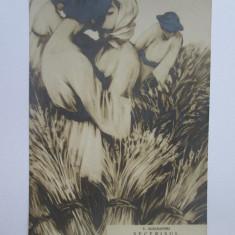 Rara! Carte postala Vasile Alecsandri-Secerisul,Scharaga Bucuresci cca.1900