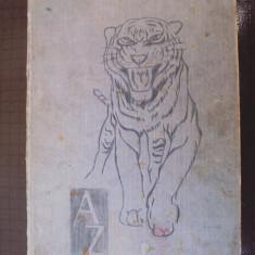 Atlas   ZOO
