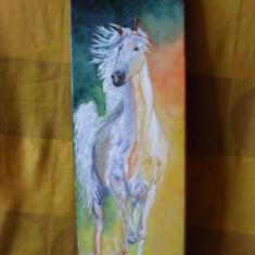 Calul alb 1-pictura ulei pe panza;Macedon Luiza, Animale, Altul