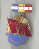 1959 - BRIGADIER AL MUNCII PATRIOTICE  din  RPR -  Insigna email  SUPERBA