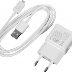 Adaptor priza 5V 2Ah USB AC cu cablu micro USB inclus C233