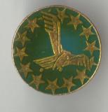 AVIATIE -  ROMANIA  - Insigna RARA