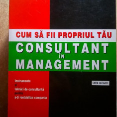 Calvert Markham - Cum sa fii propriul tau consultant in management