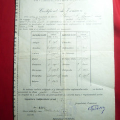 Certificat de Examen - Diploma-in iunie 1904 ,numerotata