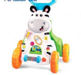Premergator copii Zebra Push Baby Walker
