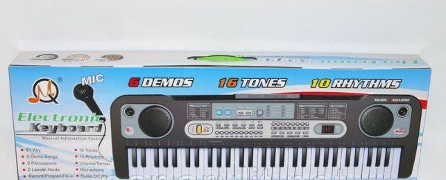 Orga cu microfon pentru copii cu 61 de key