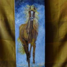 Cal alergand 1-pictura ulei pe panza