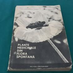 PLANTELE MEDICINALE DIN FLORA SPONTANĂ / CONSTANTINESCU CORNELIU/1967