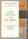 Plantele medicinale pentru boli comune
