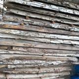 Cherestea din trunchi de nuc uscata 3 ani 1,5 metrii cubi