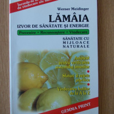 LAMAIA- IZVOR SA SANATATE SI ENERGIE- W. MEIDINGER