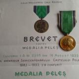 REGIMENTUL  VANATORI DE GARDA - REGINA ELISABETA - Medalia  PELES + BREVET - RAR