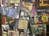 Lot 40 romane