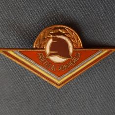 Insigna Pompieri - Prieten al pompierilor