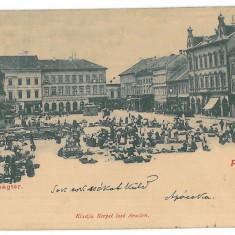 2971 - ARAD, Romania, Market, Litho - old postcard - used - 1901, Circulata, Printata