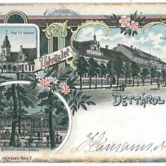 947 - DETTA, Timis, Romania, Litho - old postcard - used - 1903, Circulata, Printata