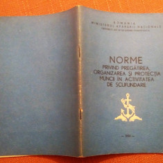 Norme Privind Pregatirea Organizarea Si Protectia Muncii In Activ De Scufundare, Alta editura, 1996
