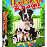 Filme Comedie Beethoven's Complete Dog-Gone Collection 1-8 [DVD], Engleza, independent productions