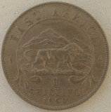 Africa de Est - 1 Shilling 1950 - H