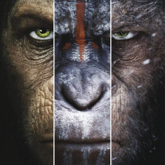 FIlme Planet Of The Apes / Planeta maimutelor 1-3 DVD Colectia Completa, Romana, independent productions