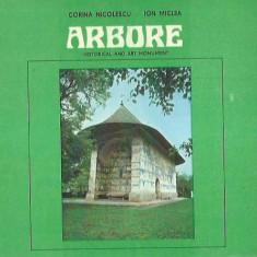 AS - NICOLESCU CORINA, MICLEA ION - ARBORE