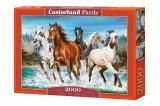 Puzzle Cai, 2000 piese, castorland