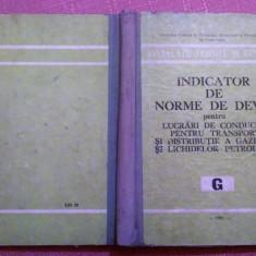 Indicator De Norme De Deviz Pentru  Conducte Gaze Si Lichide Petroliere. G -1981, Alta editura