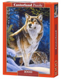 Puzzle Lup, 1000 piese, castorland